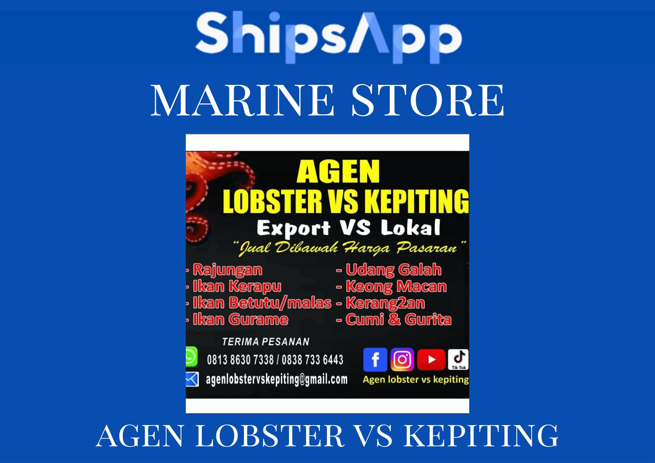 Marine Store Agen Lobster VS Kepiting