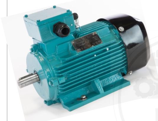 Elektro Motor BROOK Crompton 3 Phase 0,75kW 1HP IE2