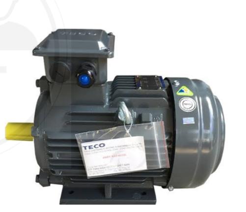 TECO AESV1S ELEKTRO/INDUCTION MOTOR 2.2kW 3HP 4P B3