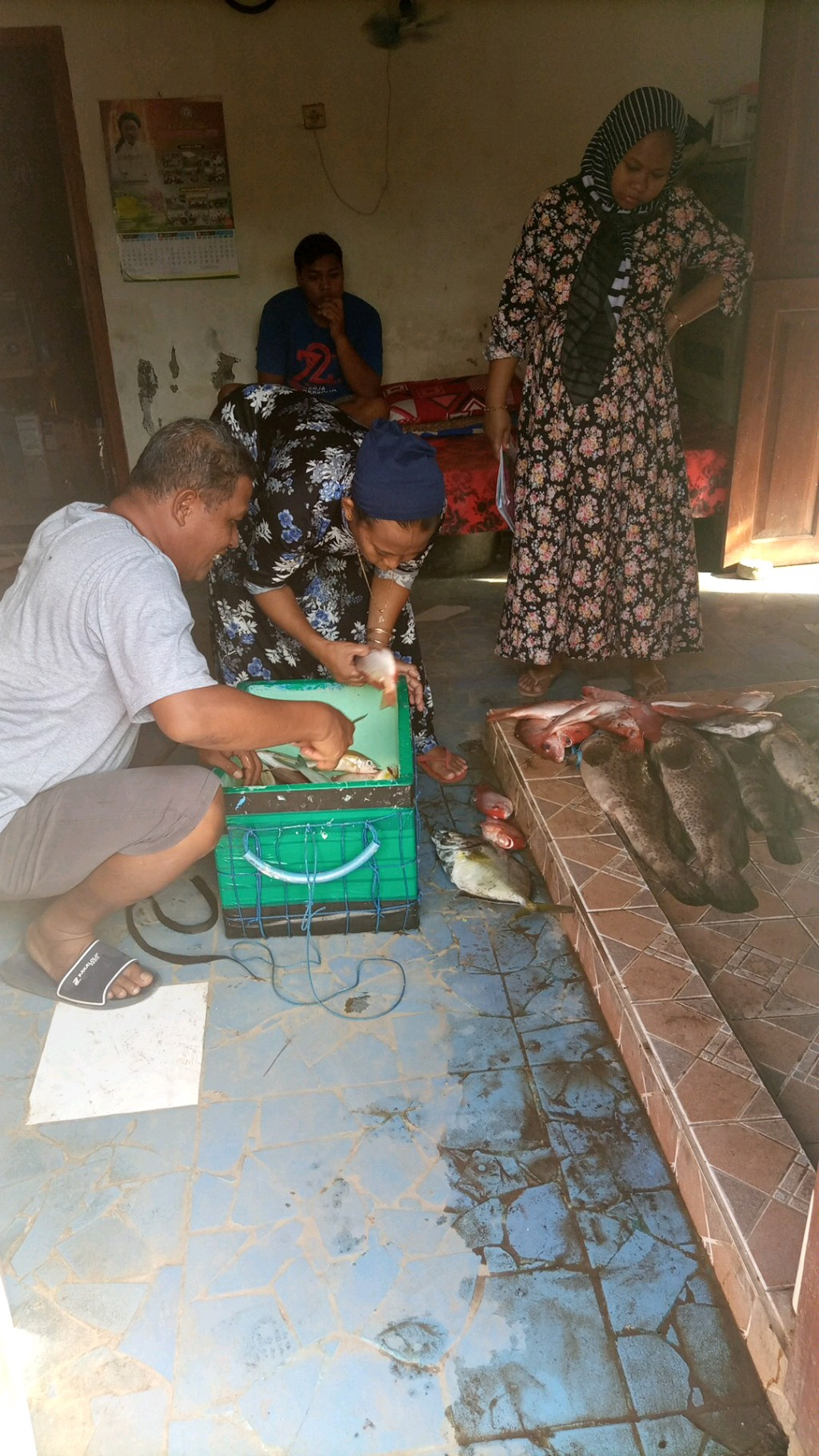 dolphin fishing charter